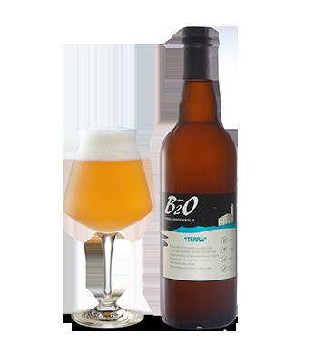Birra artigianale Terra B2O